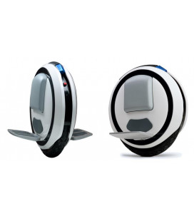 Моноколесо Ninebot by Segway ONE E+ (22.05.0008.20) Гар. 12 мес.